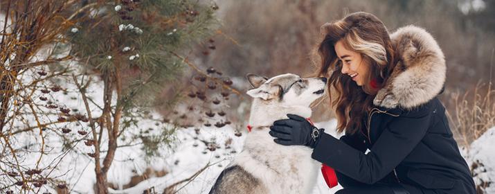 Cuidados básicos para tu perro en invierno